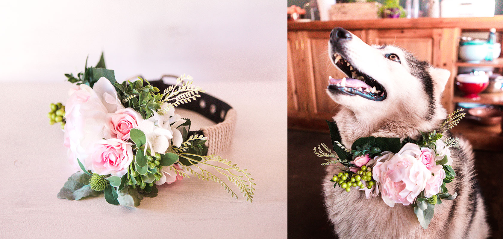 Floral dog collar, In 5 easy steps